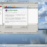 utorrent_ros